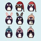 Sistema de la historieta de los pingüinos Foto de archivo
