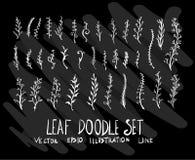 Sistema de la hoja de la colección del dibujo del garabato del vector en fondo negro Foto de archivo