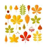 Sistema de la hoja del otoño aislado en el fondo blanco Foto de archivo