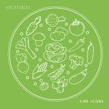 Sistema de la línea iconos vegetales blancos en el círculo aislado en fondo verde Comida fresca y sana de la granja Fotos de archivo libres de regalías