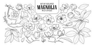 Sistema de la magnolia aislada en 21 estilos Ejemplo dibujado mano linda del vector de la flor en el avión negro del esquema y bl imágenes de archivo libres de regalías