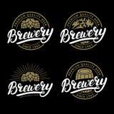 Sistema de la mano de la cervecería escrito poniendo letras al logotipo, etiqueta, plantilla de la insignia Fotografía de archivo libre de regalías