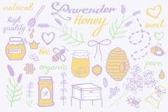 Sistema de la miel de la lavanda Colección a mano de la historieta - flores, tarros, caligrafía, elementos florales Dibujo del ga Imagen de archivo libre de regalías