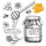Sistema de la miel del vector Ejemplo dibujado mano del vintage imágenes de archivo libres de regalías