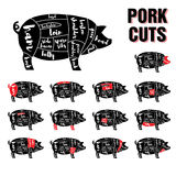 Sistema de la plantilla del vector de los cortes de cerdo Foto de archivo
