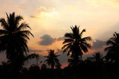 Sistema de la puesta del sol del campo Foto de archivo libre de regalías