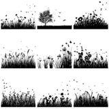 Sistema de la silueta de la hierba Imagen de archivo libre de regalías