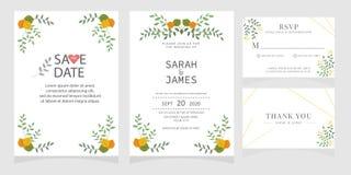 Sistema de la tarjeta con la rosa de la flor, hojas El cartel floral, invita Concepto del ornamento de la boda Plantilla de la ta foto de archivo