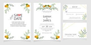 Sistema de la tarjeta con la rosa de la flor, hojas El cartel floral, invita Concepto del ornamento de la boda Plantilla de la ta foto de archivo libre de regalías