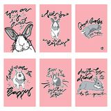 Sistema de la tarjeta linda con el conejo Fotos de archivo
