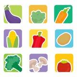 Sistema de la verdura Imagen de archivo libre de regalías