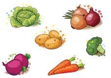Sistema de la verdura para su diseño ilustración del vector