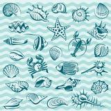 Sistema de la vida marina Foto de archivo