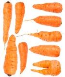 sistema de la zanahoria aislado Imagenes de archivo