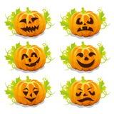 Sistema de las calabazas para Halloween Imagen de archivo