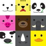 Sistema de las caras animales Fotografía de archivo libre de regalías