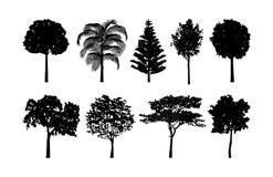 Sistema de las colecciones del vector de la silueta del árbol libre illustration