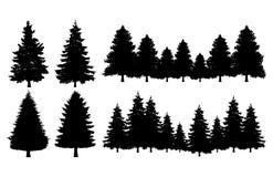 Sistema de las colecciones de la silueta del árbol de pino stock de ilustración