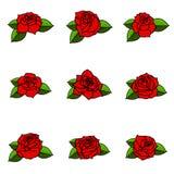 Sistema de las diversas rosas con las hojas aisladas en el backgro blanco Imagen de archivo libre de regalías