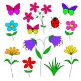 Sistema de las flores, hierbas, mariposa, mariquita