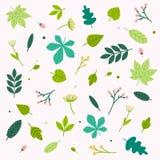 Sistema de las flores y de las hojas de la primavera Concepto moderno del ejemplo del vector del diseño plano