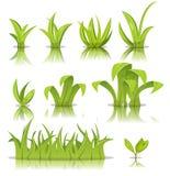 Sistema de las hojas, de la hierba y del césped ilustración del vector