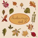 Sistema de las hojas de otoño para su diseño Imagen de archivo libre de regalías
