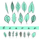 Sistema de las hojas de la aguamarina stock de ilustración