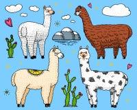 Sistema de las llamas lindas de la alpaca o del guanaco salvaje en el fondo del cactus y de la montaña Animales sonrientes divert ilustración del vector