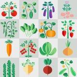 Sistema de las plantas para el jardín stock de ilustración