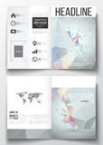 Sistema de las plantillas del negocio para el folleto, la revista, el aviador, el folleto o el informe anual Construcción molecul Fotos de archivo