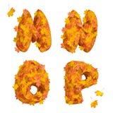Sistema de letras enormes del alfabeto del otoño: M, N, O, P Fotos de archivo