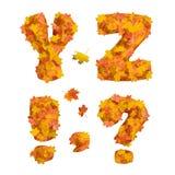 Sistema de letras enormes del alfabeto del otoño: Y, Z y signos de puntuación Fotos de archivo