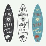 Sistema de logotipos, de etiquetas, de insignias y de elementos que practican surf en estilo del vintage Imagen de archivo libre de regalías