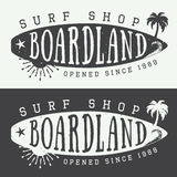Sistema de logotipos, de etiquetas, de insignias y de elementos que practican surf en estilo del vintage Ilustración del vector Imagen de archivo libre de regalías