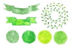 Sistema de logotipos de la acuarela Hojas del verde, ramas, plantas Foto de archivo libre de regalías