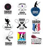 Sistema de logotipos de la calabaza, de emblemas y de elementos retros del diseño Foto de archivo