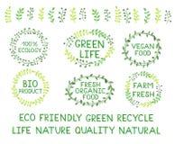 Sistema de logotipos del verde de la acuarela con las letras, texto, palabras, branc Imágenes de archivo libres de regalías