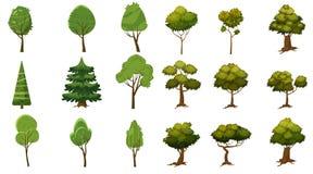 Sistema de los árboles de diversas clases, estilo de la historieta y estilizado, para el ergio y los usos, vector, ejemplo, aisla