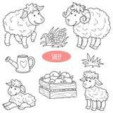 Sistema de los animales del campo y de los objetos lindos, ovejas de la familia del vector Foto de archivo libre de regalías