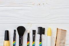 Sistema de los cepillos para el maquillaje, visión superior Fotos de archivo libres de regalías