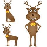Sistema de los ciervos de la Navidad Imágenes de archivo libres de regalías