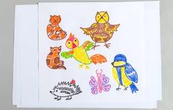 Sistema de los dibujos del niño de diversos pájaros y de insectos de los animales salvajes imágenes de archivo libres de regalías