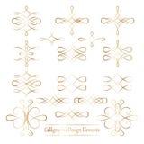 Sistema de los elementos caligráficos del vector del oro para su diseño en pizca Fotografía de archivo