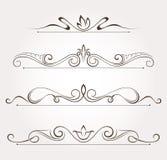 Sistema de los elementos del diseño floral y de la decoración de la página Imagenes de archivo