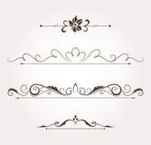 Sistema de los elementos del diseño floral y de la decoración de la página Fotografía de archivo libre de regalías