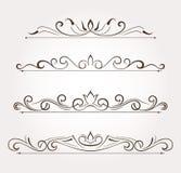 Sistema de los elementos del diseño floral y de la decoración de la página Fotos de archivo