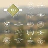 Sistema de los elementos styles del vintage para las etiquetas y de las insignias para la comida y la bebida naturales Imágenes de archivo libres de regalías