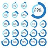 Sistema de los gráficos circulares para el infographics del negocio Barra de progreso para el diseño web elementos de 3d Infograp stock de ilustración