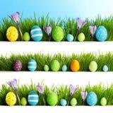 Sistema de los huevos de Pascua en hierba Imágenes de archivo libres de regalías